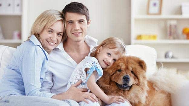 Wills & Trusts dog-young-family Direct Wills Beeston